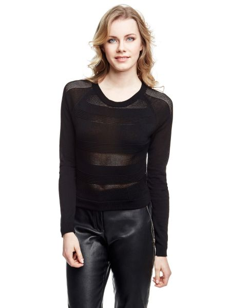 Pull court marciano
